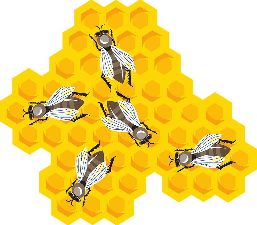 Beeswax Clip Art Cliparts