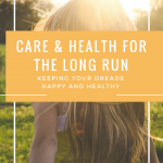 Care and Health for the Long Run: Keeping Your Dreads Happy and Healthy